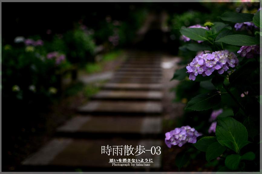 DSC_5701-2.jpg